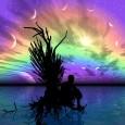 Se sapessi che i tuoi sogni possono avverarsi, quali esprimeresti? Amore eterno? Salute perfetta? Un nuovo lavoro oppure una nuova sfida? O forse più semplicemente serenità? O magari vorresti soddisfare […]