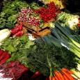 Cosa rende i cibi cotti ed elaborati, molto meno sani? Non appena si applica il calore al cibo comincia a deteriorarsi, le sostanze nutrienti si degradano o vengono completamente distrutte, […]