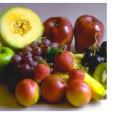 Ecco il nocciolo della questione: l'acido ascorbico non è la vitamina C. l'alfa tocoferolo non è vitamina E. L'acido retinoico non è la vitamina A. E così via per le […]