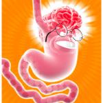 Cervello-enterico
